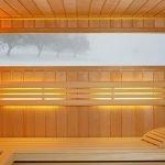 roger-sauna-infrared-2