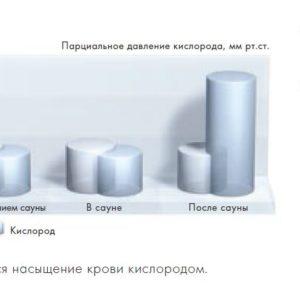 klafs-saunos-deguonies-iranga2